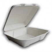 biodegradable-9-inch-square-meal-box.jpg